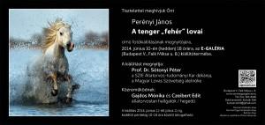 Meghivo_E-Galeria_PJ_web